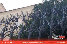 Sıra Dışı Tasarım Ağaç Tasarım Duvar Üstü Ferforje Korkuluk
